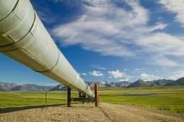 Toyota Tshusho named oil pipeline leadconsultant