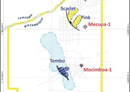 Start-up and Equipment challenges delay completion of Tembo-1 well in Mozambique